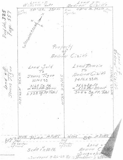 Susquehanna County Residential Lots & Land For Sale: Pine