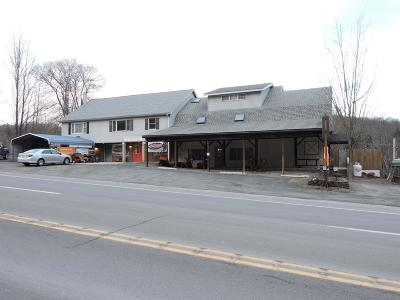 Bradford County Commercial For Sale: 48935 Route 6
