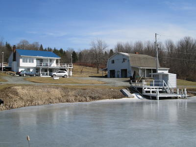 Susquehanna County Single Family Home For Sale: 1317 Stalker Hill Rd