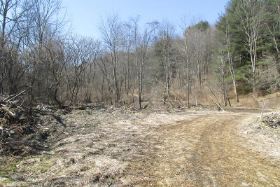Susquehanna County Residential Lots & Land For Sale: Sr 367