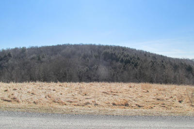 Susquehanna County Residential Lots & Land For Sale: 273 Jayne Road