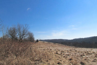 Susquehanna County Residential Lots & Land For Sale: 274 Jayne Road