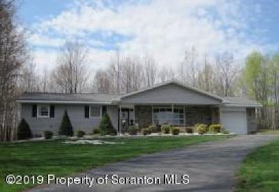 Susquehanna County Single Family Home For Sale: 199 Hudson Street