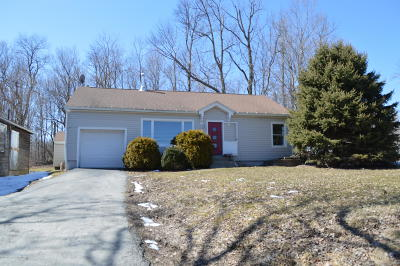 Montrose Single Family Home For Sale: 10685 State Route 29