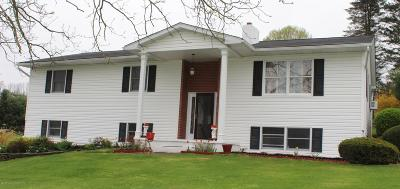 Factoryville Single Family Home For Sale: 17 Concord Ave