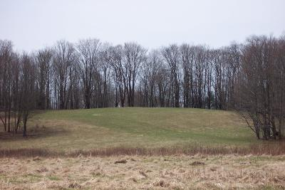 Susquehanna County Residential Lots & Land For Sale: Degnan Road