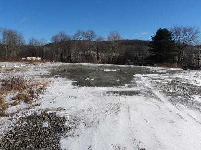 Susquehanna County Residential Lots & Land For Sale: 22018 Sr 29