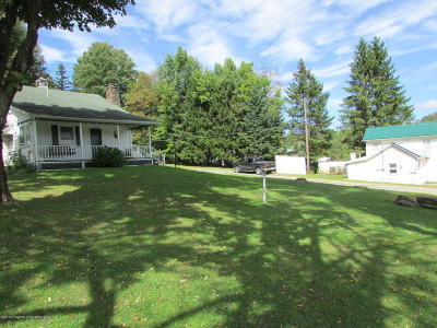 Montrose Single Family Home For Sale: 15665 State Route 29