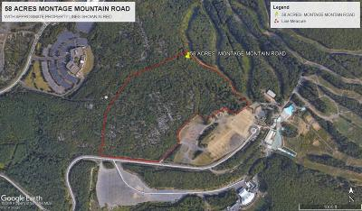 Lackawanna County Residential Lots & Land For Sale: 58 Acres Montage Mountain Road