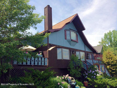 Susquehanna County Single Family Home For Sale: 20 Summer Pl