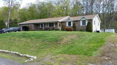 Luzerne County Single Family Home For Sale: 10 Ridge