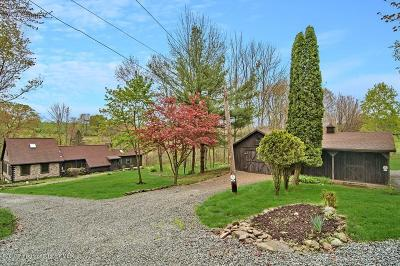 Wyoming County Single Family Home For Sale: 168 Point Rd.