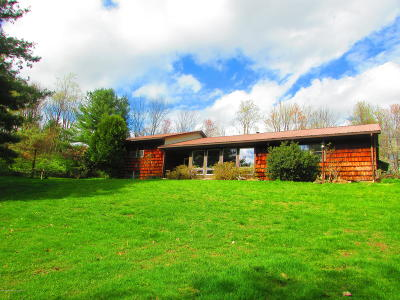 Bradford County Single Family Home For Sale: 101 King Lane
