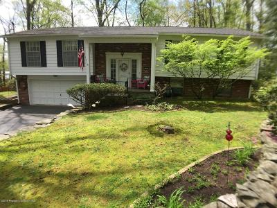 Lackawanna County Single Family Home For Sale: 205 Teaberry Ln