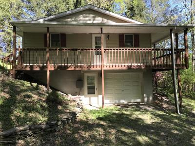 Wyoming County Single Family Home For Sale: 2180 Dalton Road