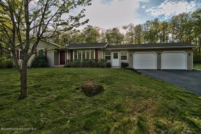Lackawanna County Single Family Home For Sale: 73 Hitchcock Rd