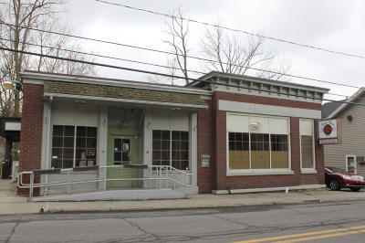 Wyoming County Commercial For Sale: 97 College Ave