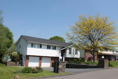 Lackawanna County Single Family Home For Sale: 1223 Waddell St