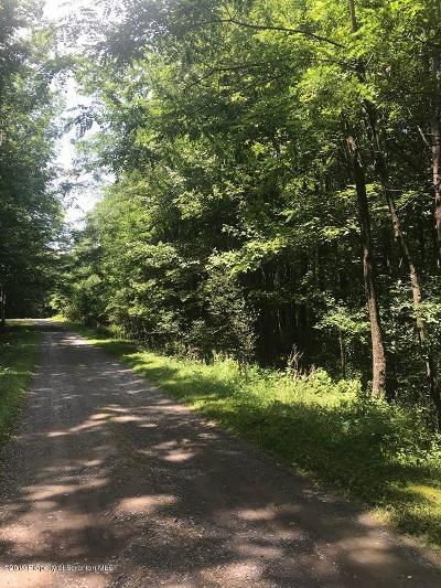 Lackawanna County Residential Lots & Land For Sale: 9 Private Rd