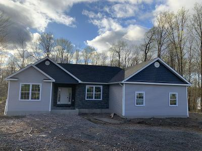 Lackawanna County Single Family Home For Sale: 107 Stonefield Drive