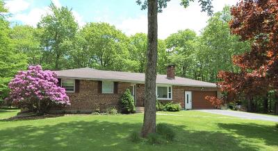 Susquehanna County Single Family Home For Sale: 296 Elkview Drive