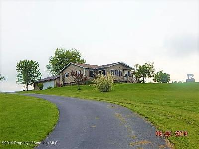 Susquehanna County Single Family Home For Sale: 11865 State Rte 3004