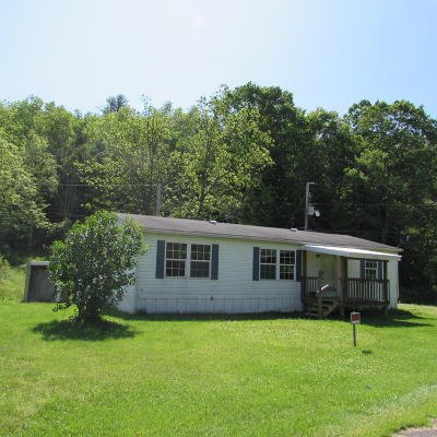 Wyoming County Single Family Home For Sale: 378 Williams Rd