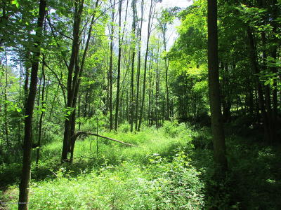 Springville Residential Lots & Land For Sale: State Route 3006