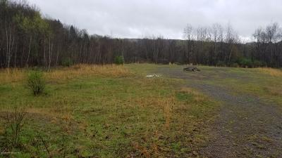 Luzerne County Residential Lots & Land For Sale: Loyalville Outlet Rd