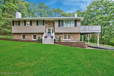 Lackawanna County Single Family Home For Sale: 3011 Third Ave