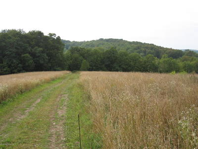 Susquehanna County Residential Lots & Land For Sale: Lower Rhiney Creek Rd