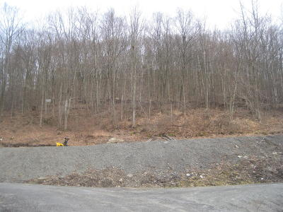Susquehanna County Residential Lots & Land For Sale: Prospect Street