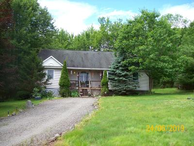 Tunkhannock Single Family Home For Sale: 24 Whites Ln