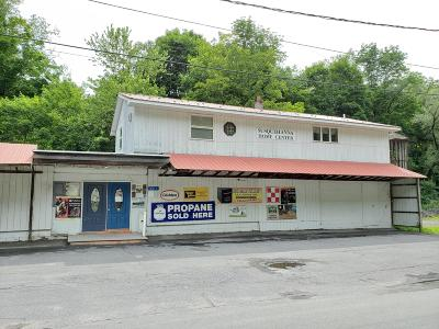 Susquehanna County Commercial For Sale: 641 Erie Ave