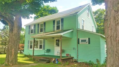 Susquehanna County Single Family Home For Sale: 25550 State Route 29