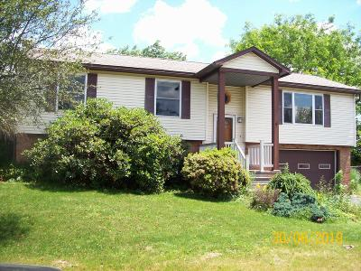 Tunkhannock Single Family Home For Sale: 16 Karin Dr