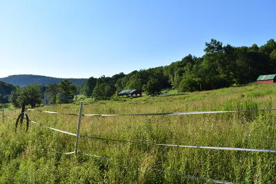 Susquehanna County Residential Lots & Land For Sale: 1693 Starrucca Creek Road