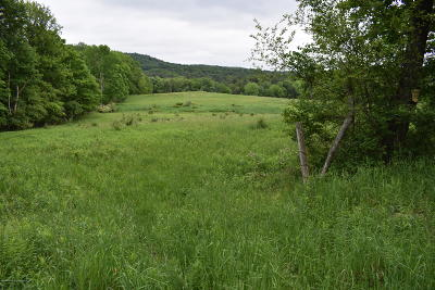 Susquehanna County Residential Lots & Land For Sale: Canada Road