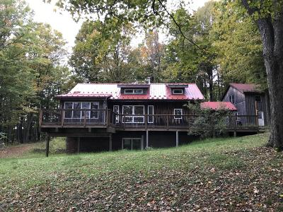Susquehanna County Single Family Home For Sale: 3 Little Street