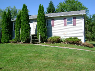 Tunkhannock Single Family Home For Sale: 9 Karin Dr