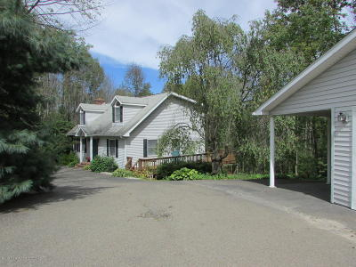 Montrose Single Family Home For Sale: 18059 State Route 706
