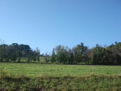 Wyoming County Residential Lots & Land For Sale: Crow Hill Rd