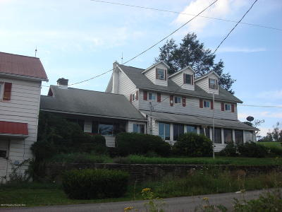 Wyoming County Single Family Home For Sale: 206 Rowland Ln