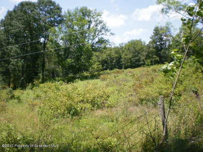 Susquehanna County Residential Lots & Land For Sale: E. Lynn & West Nicholson Roads