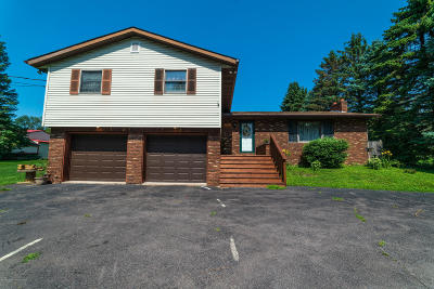 Clarks Summit Single Family Home For Sale: 317 Edella Rd