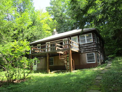 Susquehanna County Single Family Home For Sale: 59 East Silver Lake Road