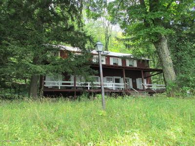 Susquehanna County Single Family Home For Sale: 8 Knappian Way