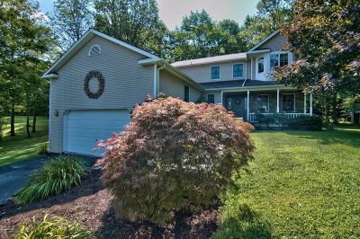 Lackawanna County Single Family Home For Sale: 1306 Seamans Rd