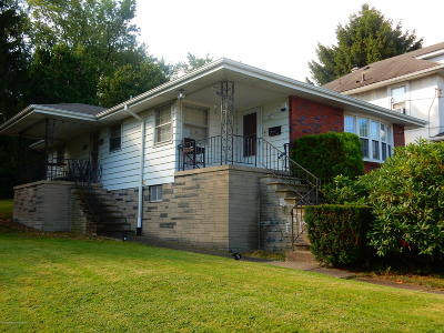 Lackawanna County Single Family Home For Sale: 1619 S Irving Ave