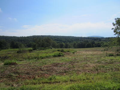 Lackawanna County Residential Lots & Land For Sale: 2123 Port Royal Rd